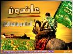 palestineir8